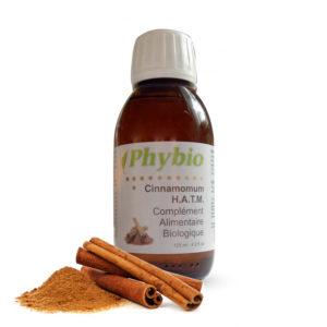 Cinnamomum verum H.A.T.M.